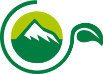 Evergreen Natural Beauty Logo